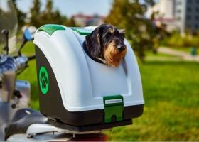 Bauletto per Cani Moto - Viaggia in Sicurezza