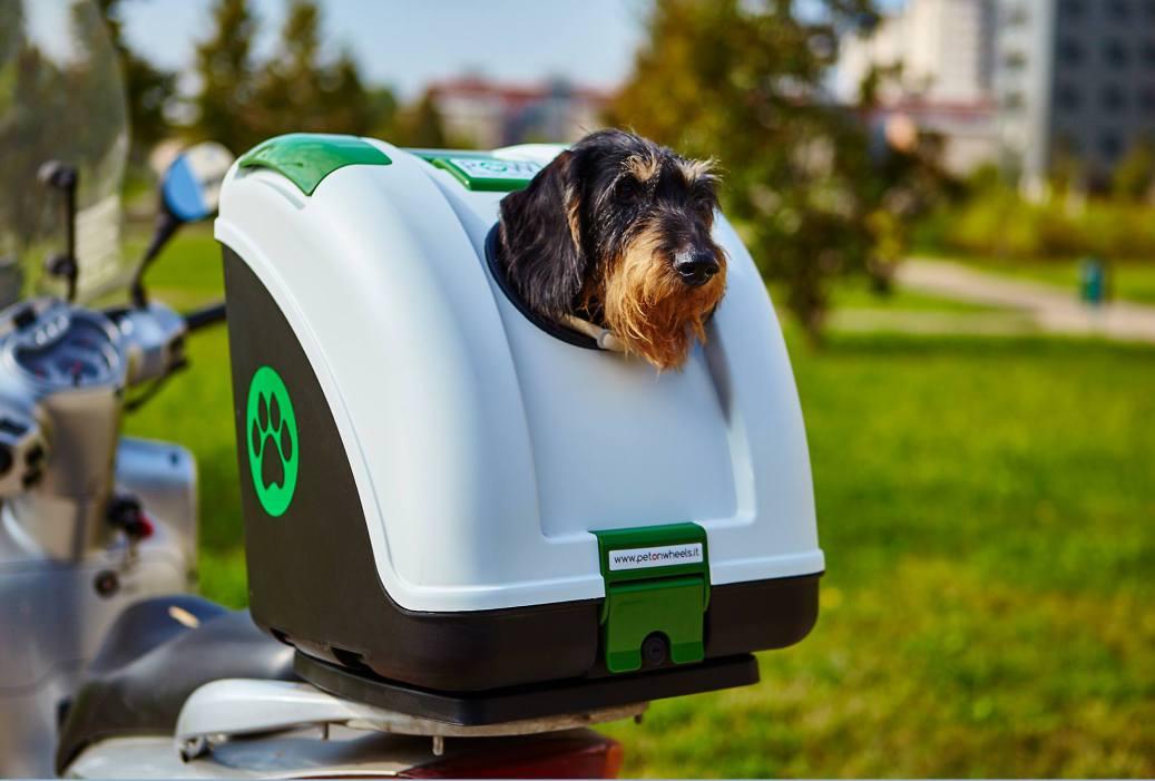 Bauletto per Cani Moto – Viaggia in Sicurezza