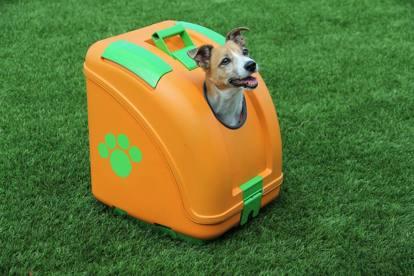 Bauletto per Cani Moto 1